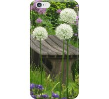 The Little Bench iPhone Case/Skin