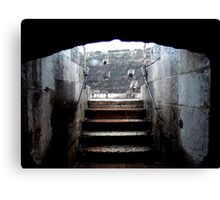 Reprieve From The Lions Canvas Print