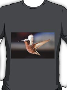 FEMALE ANNA'S IN FLIGHT T-Shirt