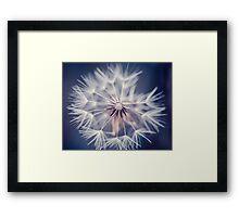 Dandelion Blue Framed Print