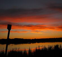 Pink Clouds Over Purgatory Creek by Sherry Freeman