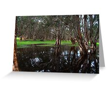Forest mirror Greeting Card