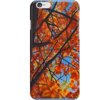 Fall trees iPhone Case/Skin