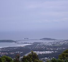 View of Coffs Harbour by megto