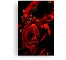 Red and Black Velvet Canvas Print