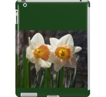 In Conversation - a Couple of Daffodils Huddled Together iPad Case/Skin