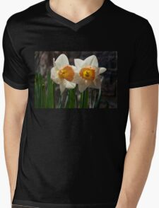 In Conversation - a Couple of Daffodils Huddled Together Mens V-Neck T-Shirt