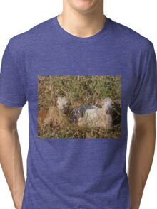 The Kids Tri-blend T-Shirt