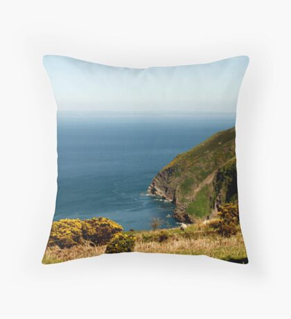 The Bristol Channel - May 2010 Throw Pillow