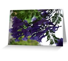 Hanging on the Breeze. Greeting Card