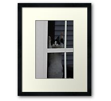 Hanging Around Framed Print