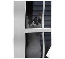 Hanging Around Poster