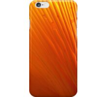 Delightfully Wicked Display iPhone Case/Skin