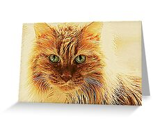 Marmalade Cat With Curvy Whiskers Greeting Card