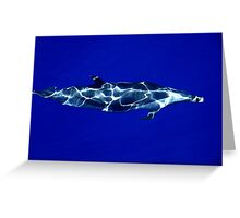 Swim with me in the Sea (the richest blue series) Greeting Card