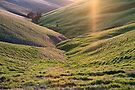 Valley in the Barossa by KathyT