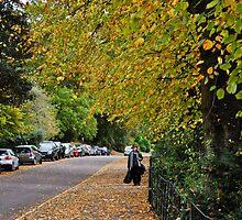 autumnal bath, england by gary roberts