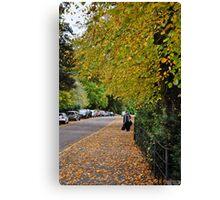 autumnal bath, england Canvas Print