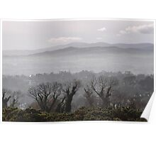 a foggy day in killiney, eire Poster