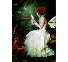 Butterfly Painter Photographic Print