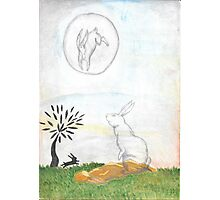 Watership Down Photographic Print