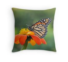 Sights of Spring Throw Pillow