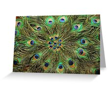 Peacock Feather Fan - Handcrafted Greeting Card