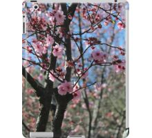 Nature - Cherry Blossom Festival in Australia iPad Case/Skin