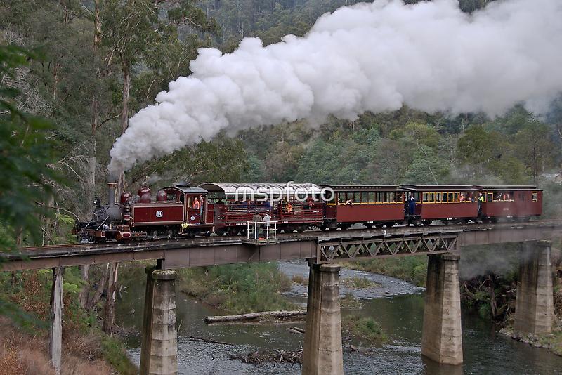 NA Returns to Walhalla Goldfield Railway by mspfoto