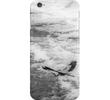 Blue Heron - Flight iPhone Case/Skin