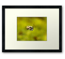 Flight Goggles Framed Print