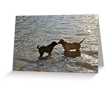 dog greetings in the river Greeting Card