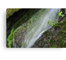 waterfalls Franny Reese Park Canvas Print
