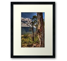 Nothing Like a Tree With Character - The Otways - The HDR Experience Framed Print