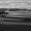 Namibia by Michael Bateman