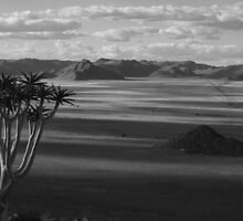 Namibia by Michael Bateman