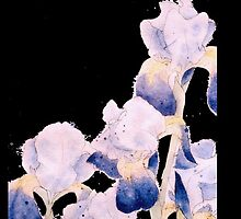 Black Iris - Flowing Watercolor by ArtByDrax