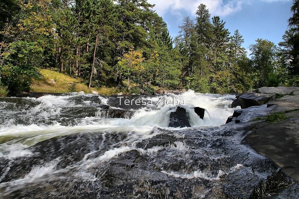 Rushing River, Ontario by Teresa Zieba