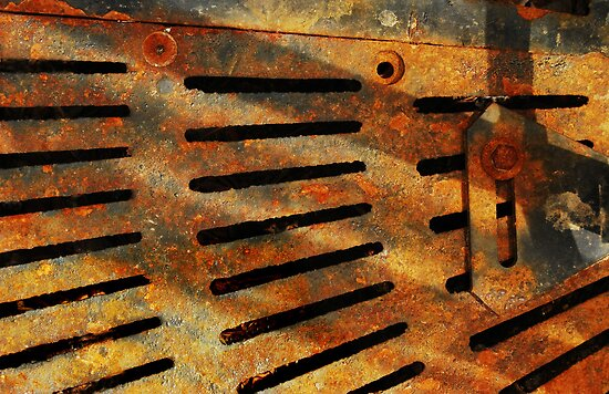 Rusted Grate by Laurie Minor