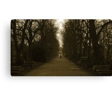 simple twist of fate Canvas Print