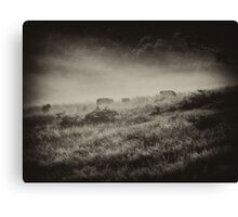 "'Breakfast in the Mist"" Canvas Print"