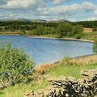 A  VIEW OF KILINGTON RES by andysax