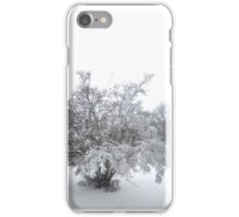 Frozen in the Time of Winter iPhone Case/Skin