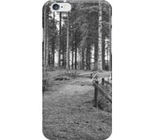 Bellever Mono iPhone Case/Skin