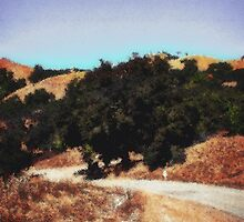 Santa Rosa Creek Road by Cupertino
