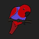 Eclectus Parrot (female) by Shukura