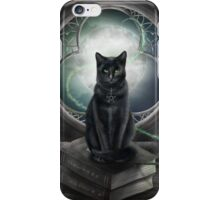 A Familiar Cat iPhone Case/Skin