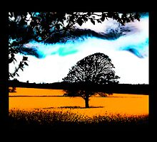 Tree in Somerset field, UK by Simone Purdy