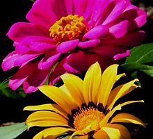 Heaven Sent by R&PChristianDesign &Photography