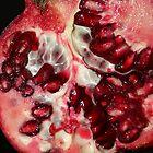 Pomegranate by v-something
